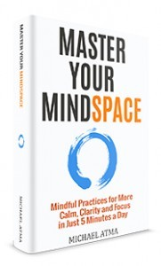 Master your mindspace book