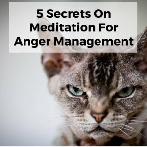 5 Secrets On Meditation For Anger Management Post