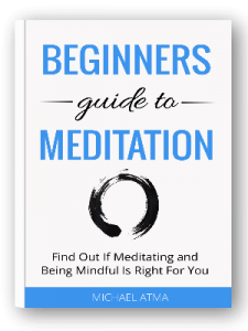 Beginners-Guide-Free-download
