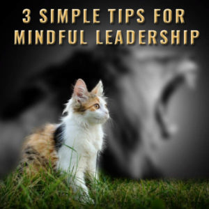 3 Simple Tips For Mindful Leadership Post Image