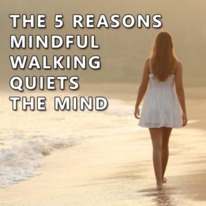 mindful walk